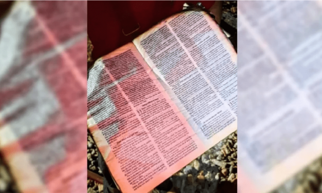 """Bomberos se sorprenden con Biblias intactas en dos incendios: """"Nunca vimos eso"""""""