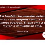 Aplicar los principios del amor es una virtud del esposo cristiano: Provisión Sábado 18 de Septiembre de 2021